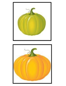 Lifecycle of a Pumpkin Craftivity