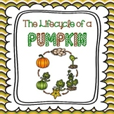 Lifecycle of a Pumpkin (Halloween, Thanksgiving and Fall Activity)