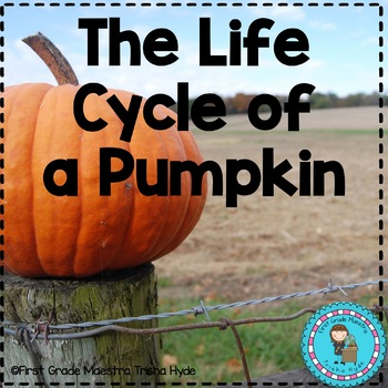 Pumpkin Life Cycle Reading, Writing, and Math