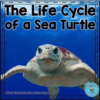 Lifecycle of a Sea Turtle  with Colored book, mini book, writing, and more.