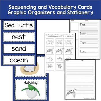 Sea Turtle Life Cycle Reading, Writing, and Math