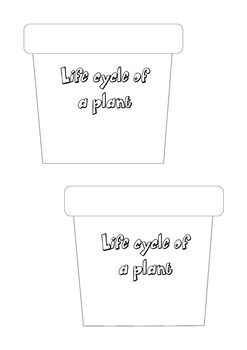 Lifecycle of a plant activity