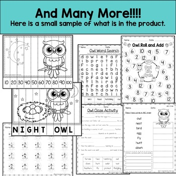 Life Cycle of an Owl  Reading, Writing, and Math
