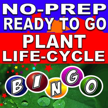 Life Cycle of the Plant Bingo!