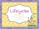 Lifecycles Mini-Unit