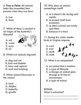 Lifecycles and Adaptations Test