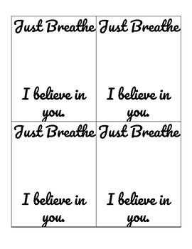 Lifesaver Just Breathe Test-Taker Tickets