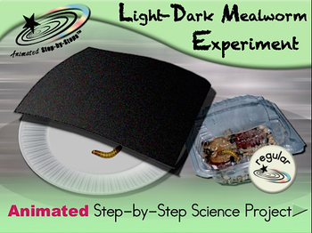 Light-Dark Mealworm Experiment - Regular