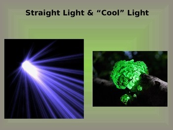 Light Rays/Bioluminescence/Chemiluminescence PowerPoint