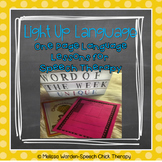 Light Up Language: One Page Language Lessons for Speech Therapy SET ONE