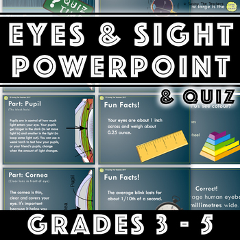 Light and Sight PowerPoint: The Human Eye Introduction