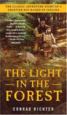 Light in the Forest Reading Guide (Common Core aligned)