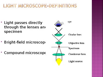 Light microscopy - Use, Definitions, Parts, Image Formation and Light Pathway