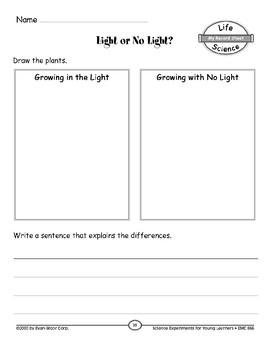 Light or No Light (Characteristics of Organisms)