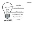 Lightbulb Diagram