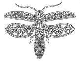 Lightning Bug Firefly Insect Zentangle Coloring Page