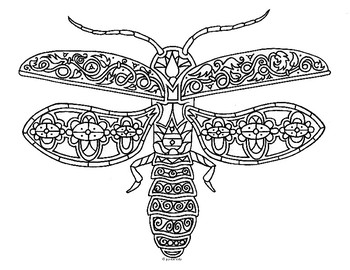 lightning bug firefly insect zentangle coloring page by pamela kennedy