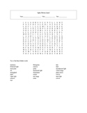 Lights, Mirrors, Lenses! Word Search puzzle with answer key