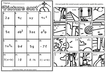 Like terms picture sort.(freebie)