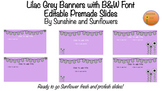 Lilac Grey Banners with B&W Font Editable Sunflower Slides