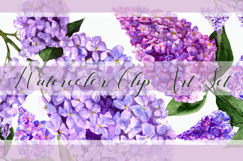 Lilac Watercolor Clip Art Set + Wreath, Border and Flower