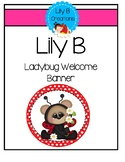 "Lily B ""Ladybug Welcome"" Banner"