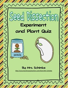 Lima Bean Dissection and Plant Quiz