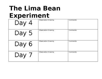 Lima Bean Experiment