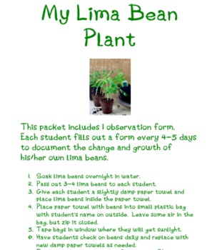 Lima Bean Experiment Observation Form