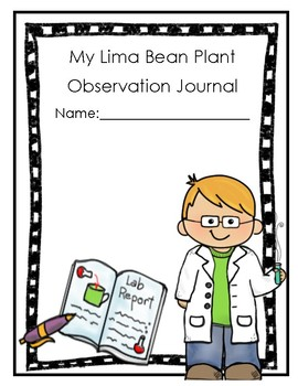Lima Bean Investigation and Experiment