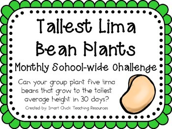 Lima Bean Plants ~ Monthly School-wide Science Challenge ~ STEM