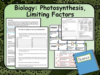 Limiting Factors of Photosynthesis Lesson