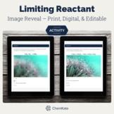 Limiting Reactant / Reagant Chemistry Print, Digital, and