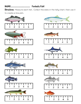 Line Plots Fantastic Fish