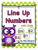 Line Up Numbers with Owls for Classroom Floor