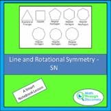 Geometry - Line and Rotational Symmetry - SN