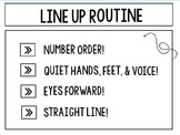 Line up procedure poster
