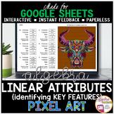 Google Sheets Digital Pixel Art Math Linear Equations: Identifying Key Features