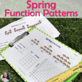 Linear Equations/ Linear Functions Patterns Spring April Activity