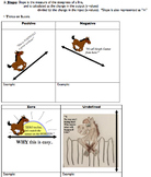 Linear Functions and Linear Relationships Unit (Common Core & PARCC Aligned)