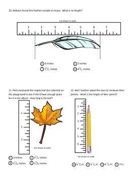 Linear Measurement & Line Plot Test - Common Core Aligned