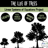 Real World Systems of Linear Equations   Project Based Learning