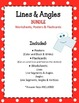 Lines and Angles Bundle Worksheets Posters Flashcards. Mat