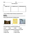 Lines and Angles Quiz