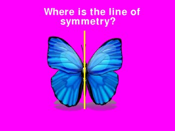 Lines of Symmetry Power Point Presentation