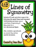 Lines of Symmetry (TEKS 4.6B) STAAR Practice