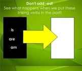 "Linking Verbs SMART Board Lesson (Grammar - SF ""I'm A Cate"