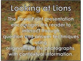 African Cats: Lions - PDF presentation