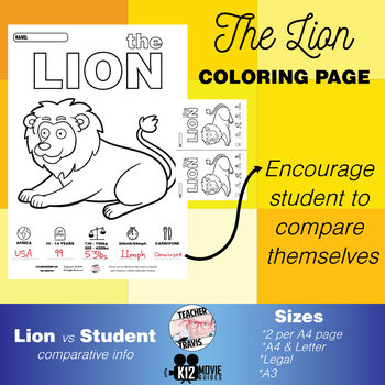 Lion Animal Coloring Book Activity
