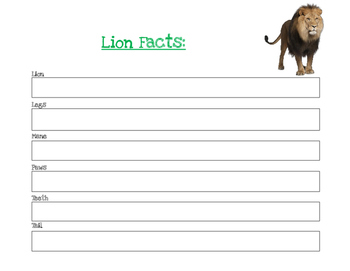 Lion Facts